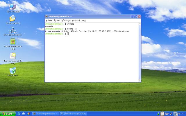 Copie d'écran de Tails en mode winxp